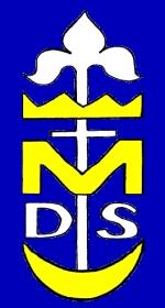 symbol DSM